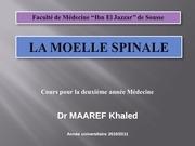 la moelle spinale