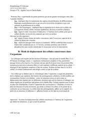 Roneo Cancero final.pdf - page 4/32