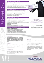 attache commercial alternance