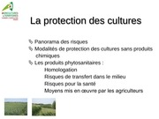 Fichier PDF protection