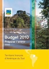 budget2010