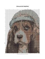 chien pdf 2