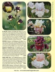 2012_catalog_covers_&_introductions_pdf.pdf - page 6/11