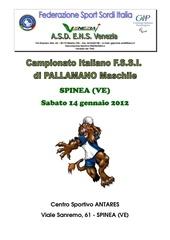 programma fssi pallamano 2012