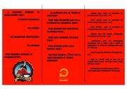 Fichier PDF polytech partenaire 2 copie