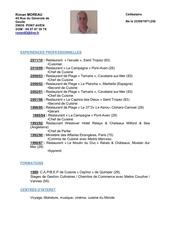 Fichier PDF cv word ronan 2011
