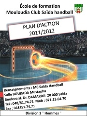 plan d action mcs 2010 2011