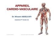 anatomie cardio circulatoire dr wissem 1
