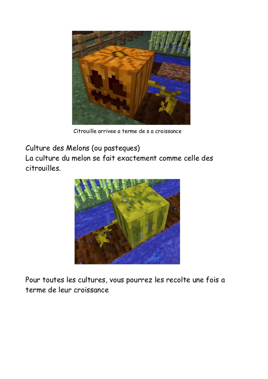 Tuto agriculture.pdf - page 3/4