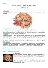 neuro 1 partie 2