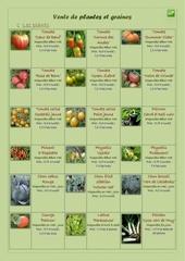 vente de plantes et graines 1