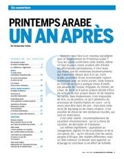 2012 02 13 printemps arabe