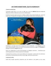 article handi chiens