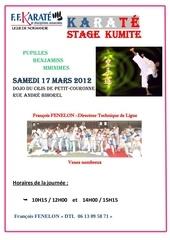 stage kumite 17 03 2012