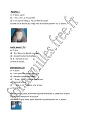 pp 4 petit lapin gris