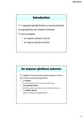 anatomie de l appareil g nital par toshiba fichier pdf. Black Bedroom Furniture Sets. Home Design Ideas