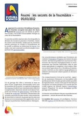 fourmi les secrets de la fourmiliere