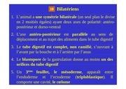 Fichier PDF metazoaires partie3