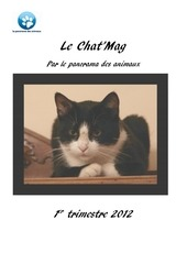 chat mag 1tr2012