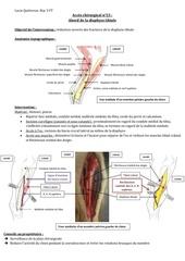 lucie quievreux acces chirurgical n 23 abord de la diaphyse tibiale
