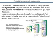 cours05