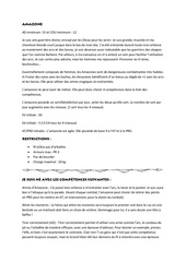 Fichier PDF amazone