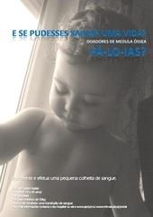 Fichier PDF flyer pdf 1