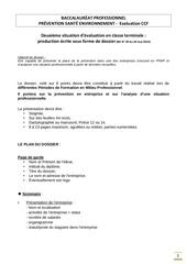 Exemple de dossier pse bac pro restauration - Pse bac pro ...