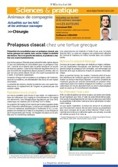nac chirurgie prolapsus cloacal tortue grecque