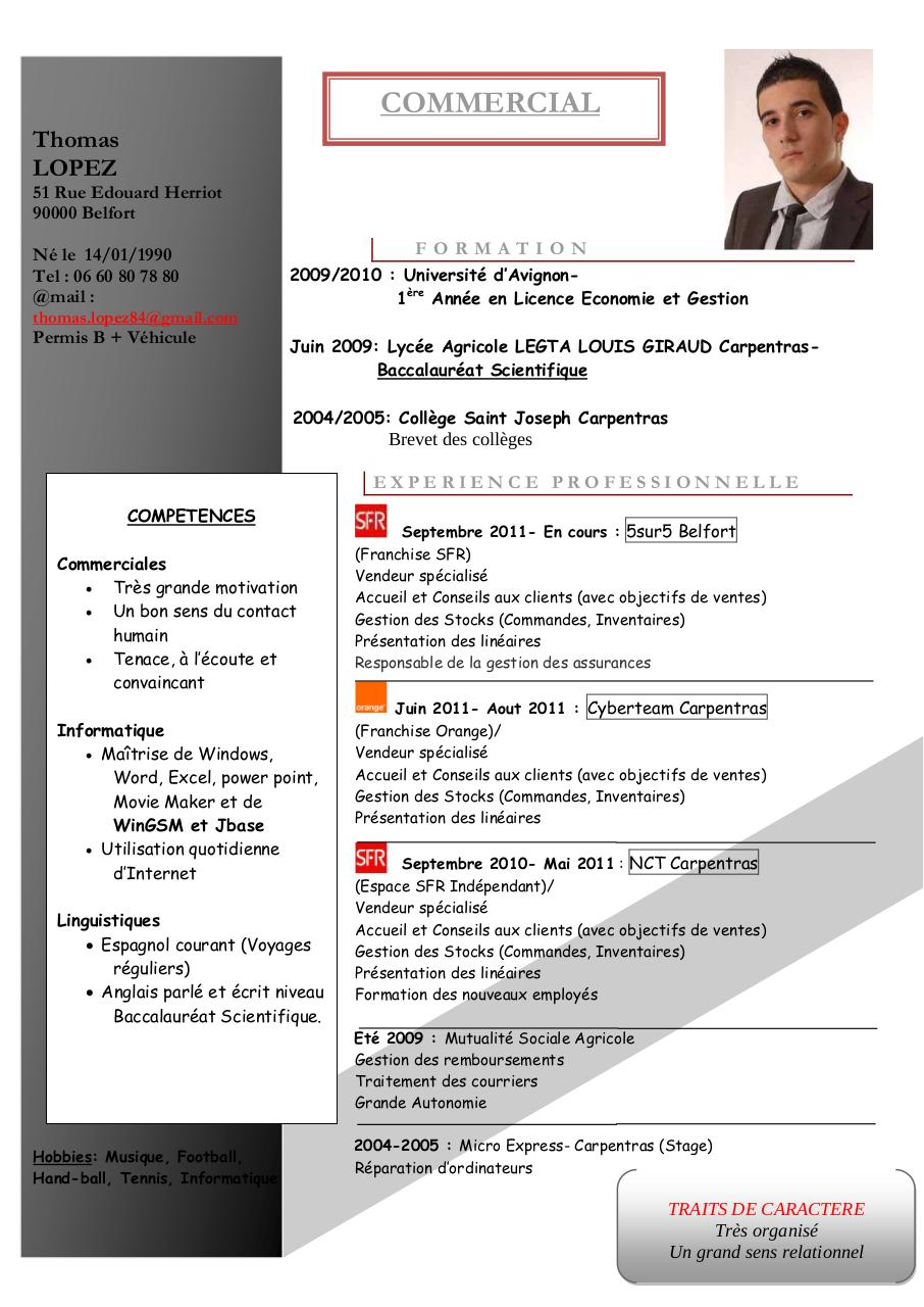 resume format  pr u00e9sentation cv informatique