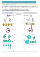 Fichier PDF chapitre 4 gametogenese