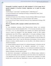 etude sur le gisement du phosphate tozeur nefta