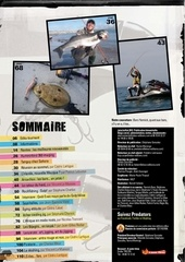 pm41 sommaire