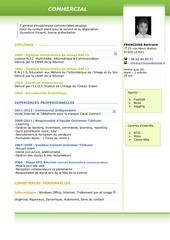 Fichier PDF cv bertrand