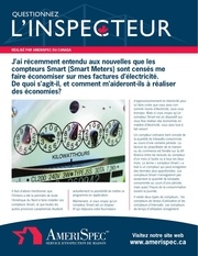 inspector smartmeters fre