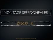 montage speedohealer z750