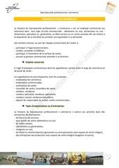 Fichier PDF presentation generale bac pro commerce