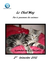 chat mag 2tr2012