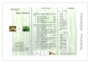 brochure institut new wave a envoyer