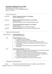 Fichier PDF cv ca delafouffe doc