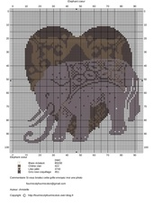 elephant coeur