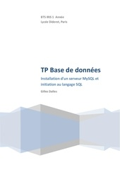 Fichier PDF bdd1