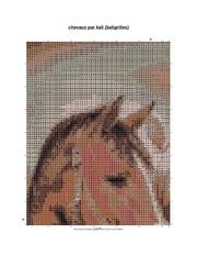 chevaux pdf