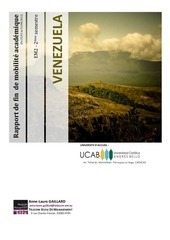 rapport venezuela anne laure copie