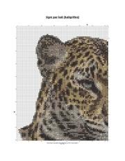 tigre pdf
