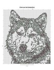 chien loup pdf