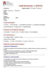 Fichier PDF audit des besoins langue