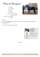 Fichier PDF catalogue nes avant 2005