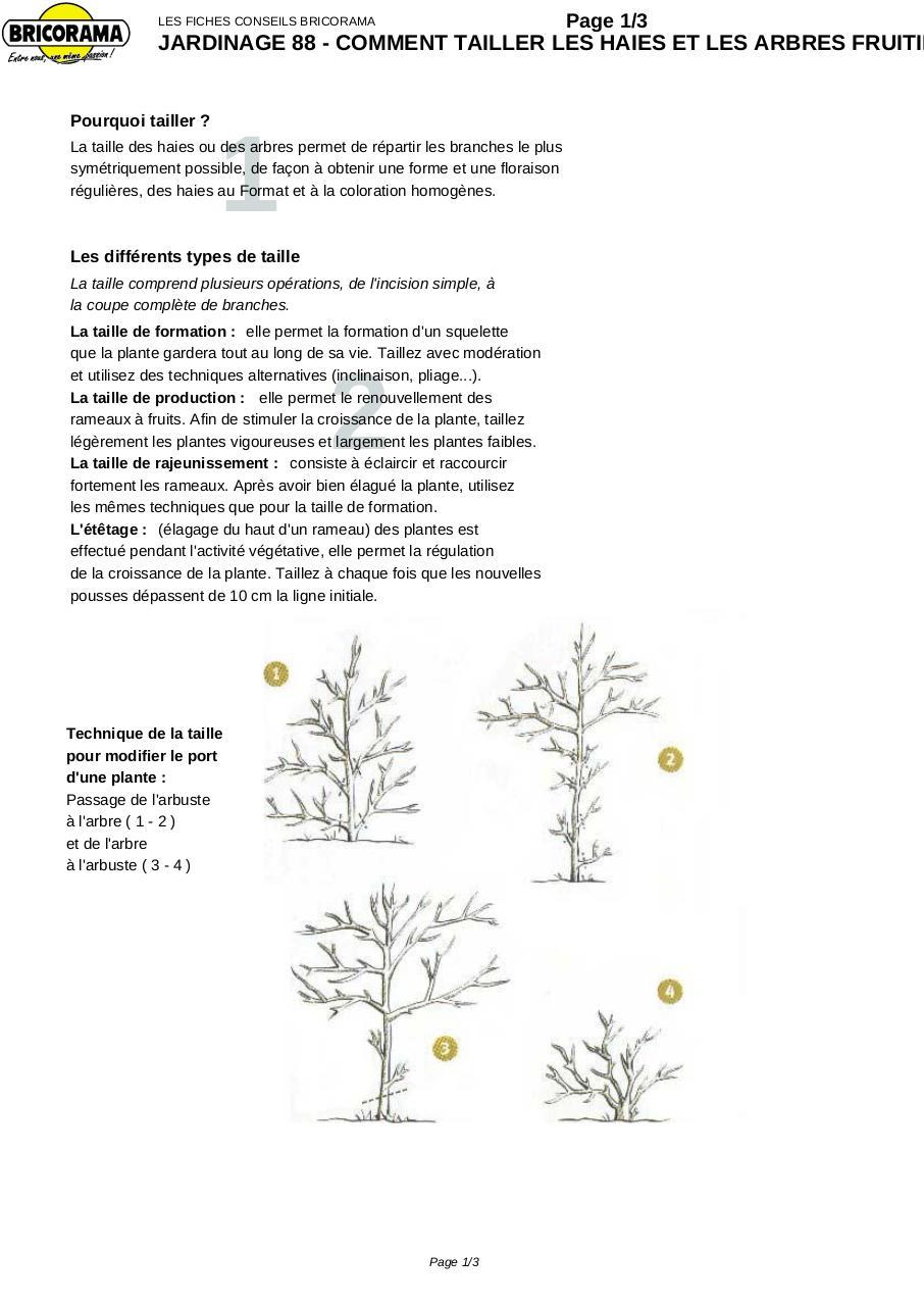 jardinage 88 comment tailler les haies et les arbres fruitiers par bricorama jardinage. Black Bedroom Furniture Sets. Home Design Ideas