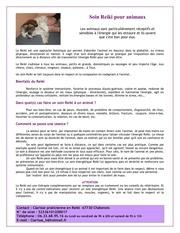 pub pour animaux soin reiki